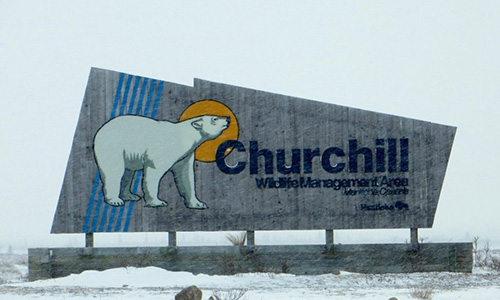 SUV rental services in Churchill, manitoba, Canada